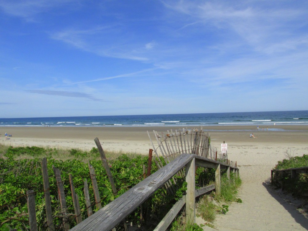 pathwaydowntobeachFootbridgeBeachOgunquitME1June2016