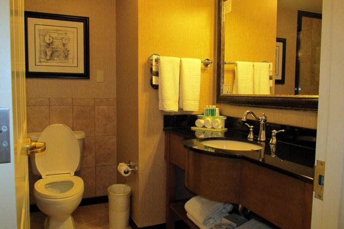 toiletsinkbathroomHIXSavannahGA17Dec2016