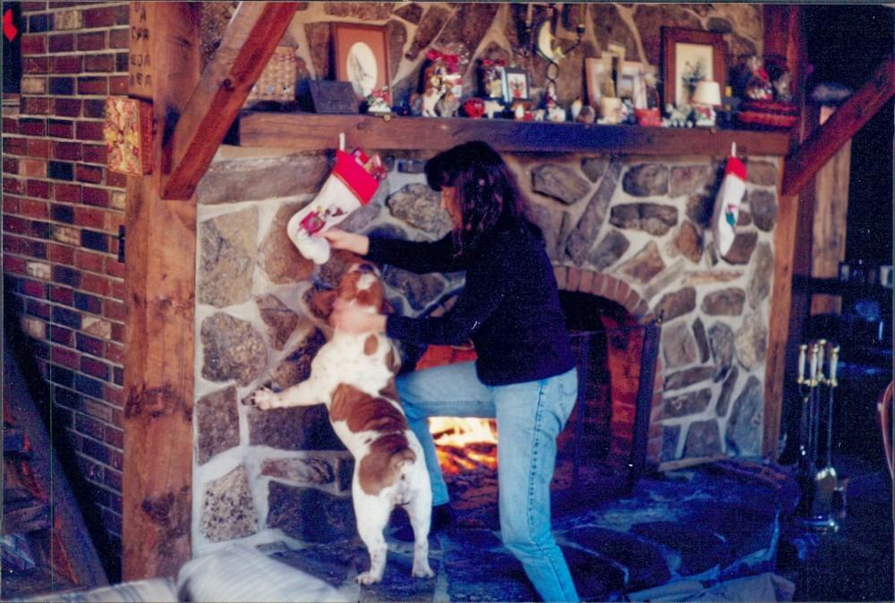 xmaswaterborofireplacecactusme1996